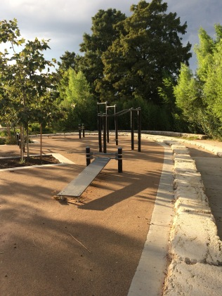Does anyone ever work out at these outdoor gyms? Anyone? Ever?