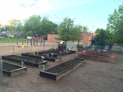 The school garden at sunset