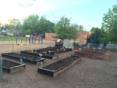 The school garden at sunset