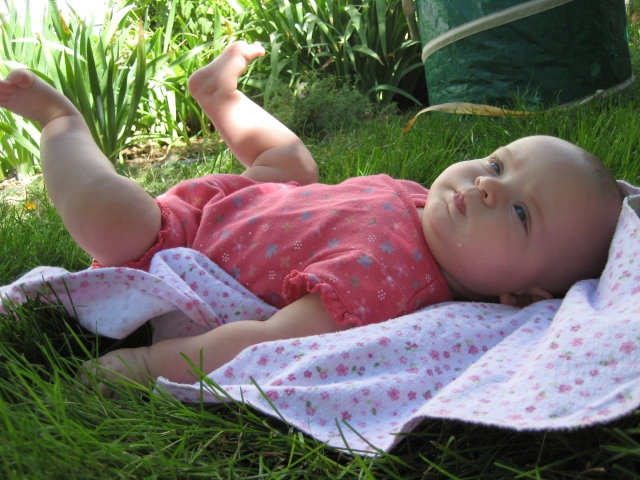 Image 7 - baby in the garden